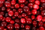 berry-diet-backdrop-eating-background-cranberry_121-22024.jpg